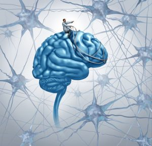 Brain medical research concept with a science doctor on a brain steering with a harness the direction through a maze of three dimensional neurons as an icon of finding a cure with a proper diagnosis for autism and alzeimers disease.